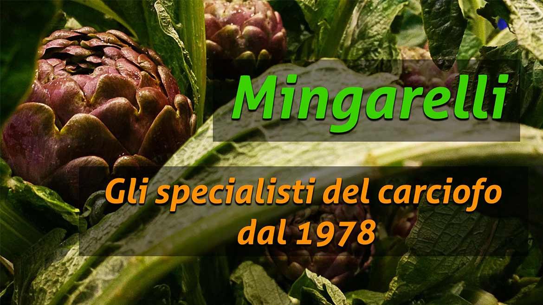 ortofrutta mingarelli gli specialisti del carciofo dal 1978